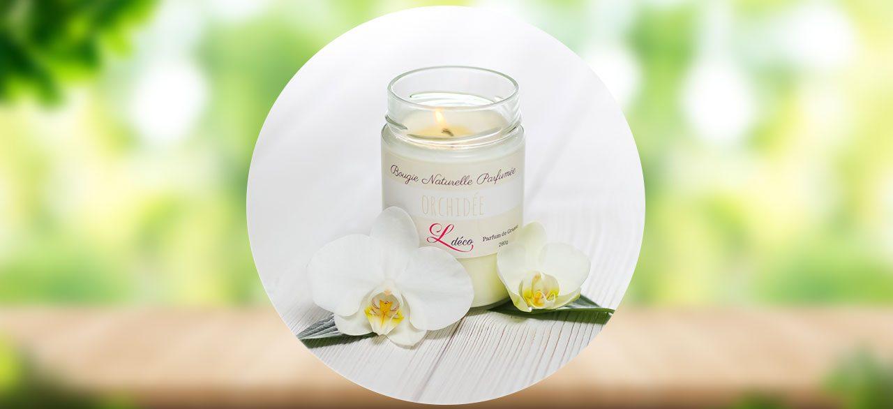 bougie parfumée orchidée