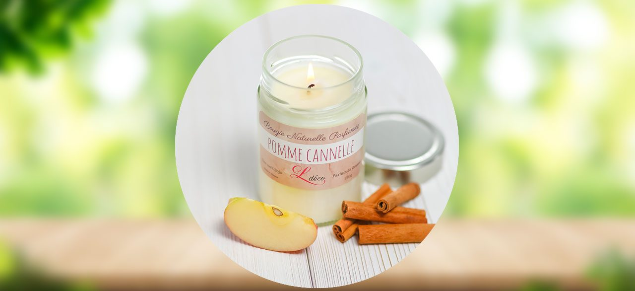 Pomme cannelle Ldéco