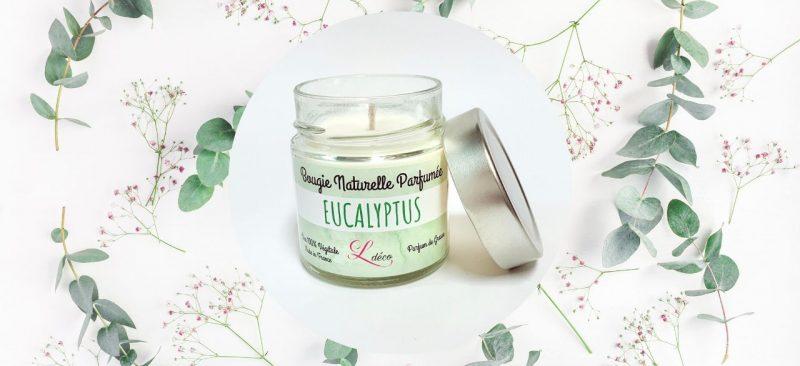 bougie eucalyptus