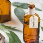 Pourquoi utiliser l'eucalyptus pour purifier son intérieur ?